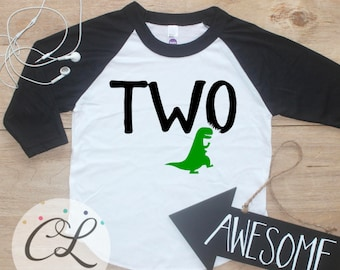 Two Dinosaur Birthday Boy Shirt / Baby Boy Clothes 2 Year Old Outfit Second Birthday TShirt 2nd Birthday Party Raglan Two Toddler 254
