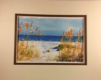 Gulf Beach Sea Grass