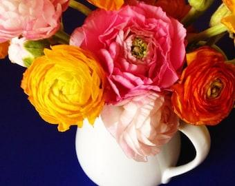 ranunculus, floral, flowers, spring, fine art photography
