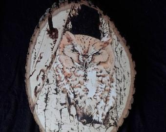 Wood Burned Screech Owl