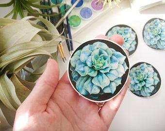 Vinyl Succulent Stickers, Vinyl Stickers, Laptop Stickers, Original Artwork, Succulents, Journaling, Scrapbooking, Garden, Nature,