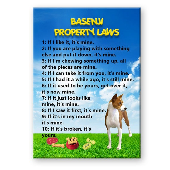 Basenji Property Laws Fridge Magnet No 1