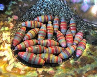 Wooden Rainbow Handmade Paper Beads 1 Inch: Set of 20