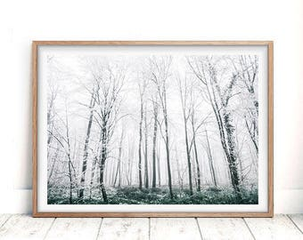 Snow Trees Forest, Winter Landscape Photography, Nature Wilderness, Printable, Modern Scandinavian Print, Scandi Wall Art Decor