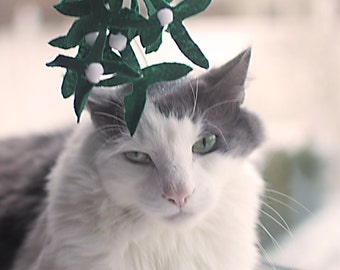 Mistletoe Cat Hat / Kissy Kat Fascinator