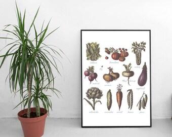 Vegetables poster, vegetables print, kitchen print, home decor, wall art print, wall print, kitchen poster, food print, nature