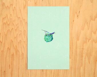 "Anna's Hummingbird, 6"" X 4"""