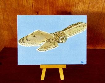 Owl   Pueo   Hawaiian Owl   Original Painting   Affordable Fine Art