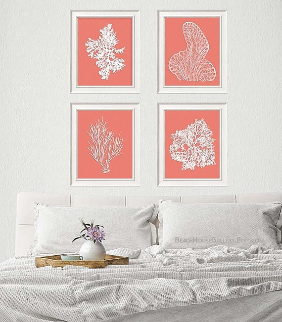 Coral Art Pink Coral Prints Pink Sea Coral Print Set FOUR