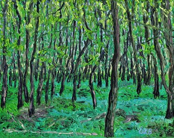 Middle Fork Forest Preserve, 8 x 10in., giclee print