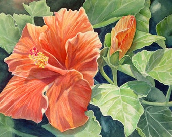 Red Hibiscus Kauai Painting Art Print