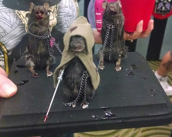 Michonne and friends taxidermy mice