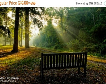 SALE 20% Off Autumn Morning Landscape Photograph Light Shafts Delaware Canal State Park Towpath Bucks County Pennsylvania Inspiration Trees