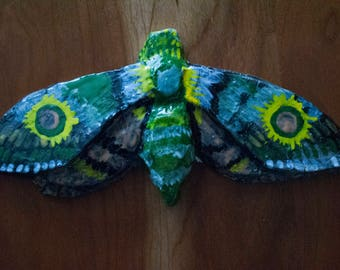 Moth, Yellow and Green