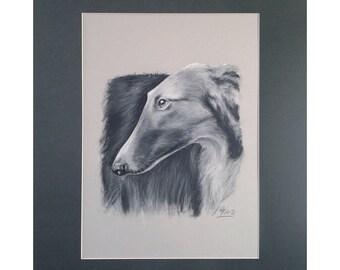 Borzoi Dog Drawing