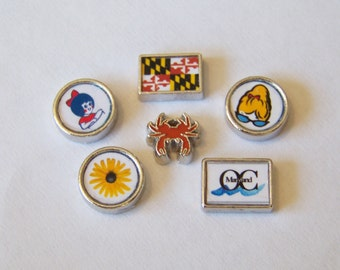 Maryland Themed Floating Charms, CHOOSE 1, will fit into any brand of floating charm locket necklaces or bracelets