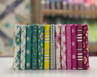 Washington Depot {Short Stack} - Fat Quarter Bundle by Denyse Schmidt - 13 prints