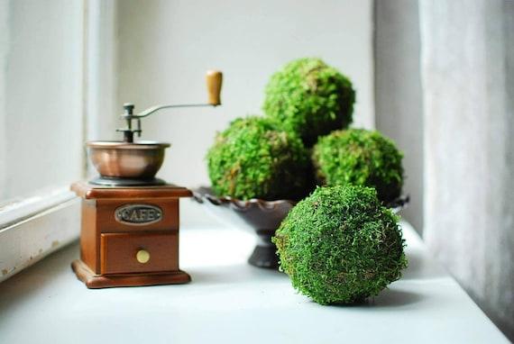 Natural Moss Balls Set Of 40 Decorative Balls For Bowls Fascinating Natural Decorative Balls