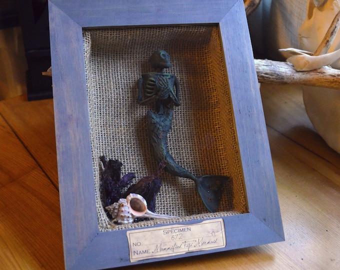 Mummified Fiji Mermaid Shadow Box Display