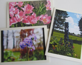 Blank Notecards, Set of Five, with envelopes