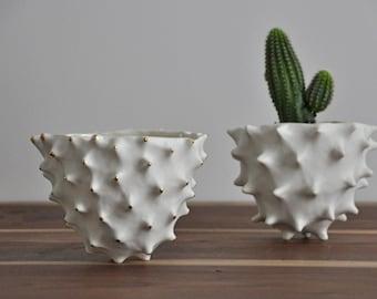 Gold Tipped Tall Conch Bowl - White Gold Modern Ceramic Bowl Modern Planter Ceramic Pot