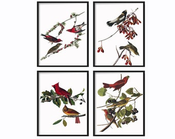 Bird Wall Art - Prints - Farmhouse Prints - Poster - Wall Hanging - Farmhouse Decor - Rustic Decor - Vintage Prints - Large Wall Art