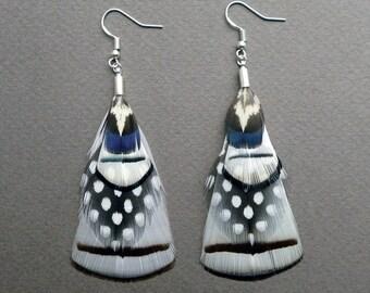 Feather Dangle Earrings, black and white feather earrings, monochrome Op Art earrings