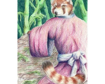 Red Panda - Original Colored Pencil