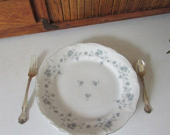 Blue Garland Dinner Plate - Small Blue Roses - Vintage Fine China by Johann Haviland - Bavaria Germany Vintage Dinnerware