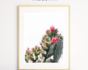 Cactus Flower Print, Cactus Wall Art, Desert Print, Botanical Wall Art, Green Plant, Cactus Photo Print, Modern Minimalist, Large Poster