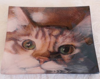 Glass Tray Printed with Cat