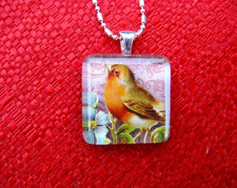 Spring Robin Square Glass Tile Pendant  on Silver Chain