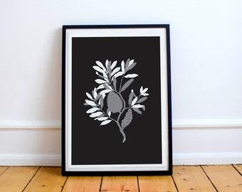 Modern Botanical Banksia on black A4 Print - Monochrome chic