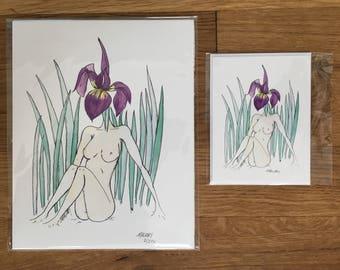 Wall Art Print, Blank Greeting Card, Iris