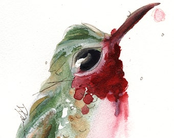 12 x 12 Bird Art, Broad-tailed Hummingbird, Bird Art Print