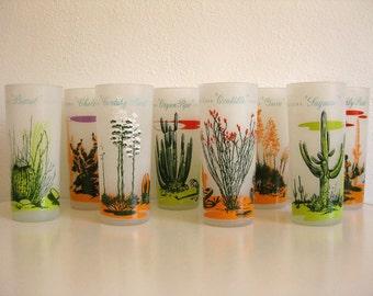Blakely Oil Arizona Cactus Glasses (Set of 8)