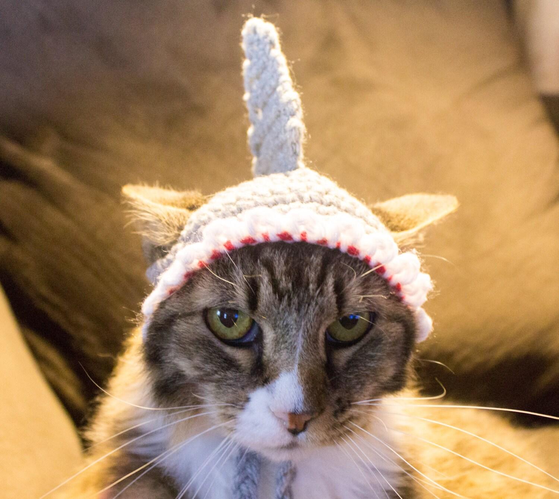 Sombrero de disfraz tiburón para gatos listo para nave gato