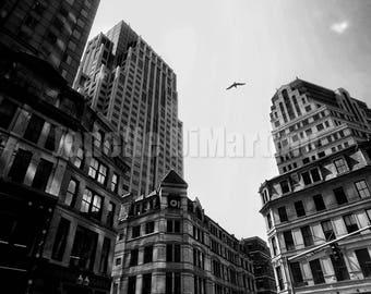 Downtown Crossing 24 | Boston, MA - FREE SHIPPING!