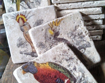 Exotic Birds of Paradise Marble Tile Coasters - Set of 4