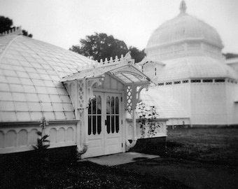 Conservatory of Flowers No. 1