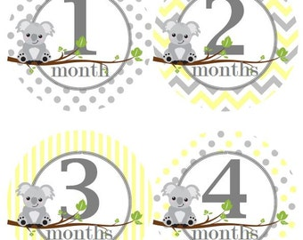 Baby Monthly Milestone Growth Stickers Yellow Grey Koalas Baby Nursery Theme Baby Shower Gift MS541 Baby Photo Prop
