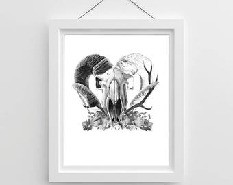 Skull and Antlers Print