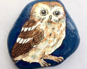 Saw whet owl painted rock