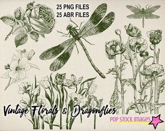Vintage Florals & Dragonflies Photoshop Brushes - 25 Brushes and PNG Files - PNG Stamps - Overlays - Floral Photoshop Elements Brushes