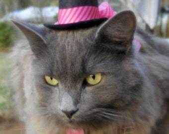 Cat Hat - Mothers' Day Mini Hat - Valentine's Day - Cupid Cat Hat - Hot Pink