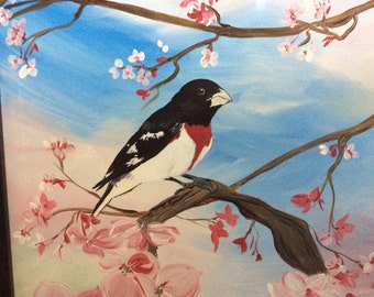 Rose Breasted Grosbeak among the Cherry Blossoms