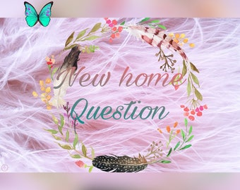 New home Question with 10 angelcards