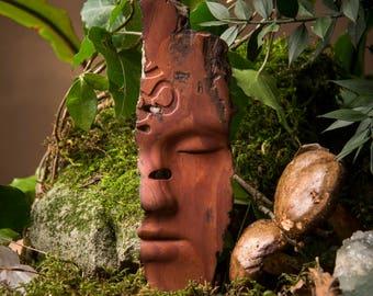 OM tropischen Treibholz Kunst Skulptur Wohnkultur Wand Kunst-Geschenk