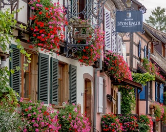 Colorful Alsace, window boxes in France, France photo, Falling Off Bicycles travel photo, fine art photography, Eguisheim photo