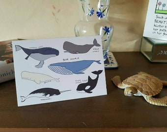 Whale, Whale, Whale - Whales Collection - Blank - Greeting Card